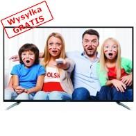 Telewizor Manta LED 94801S-20
