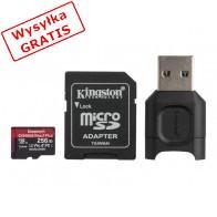 Karta pamięci KINGSTON MLPMR2/256GB-20